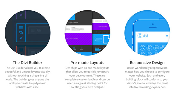 divi WordPress theme support and development